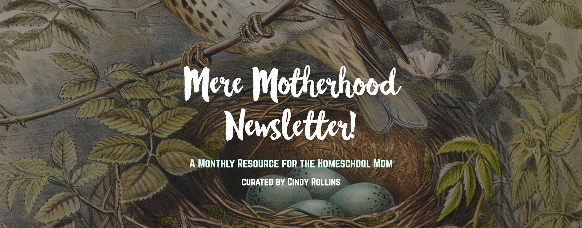The Mere Motherhood Monthly Newsletter