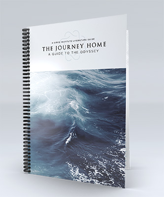 The Journey Home - A Guide to Homer's Odyssey