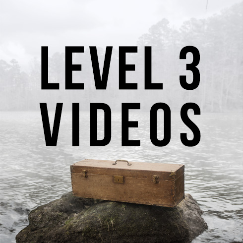 Lost Tools of Writing Level Three Videos